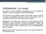 hoftebenet os coxae6