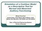 simulation of a cochlear model as a descriptive tool for normal and abnormal auditory functioning