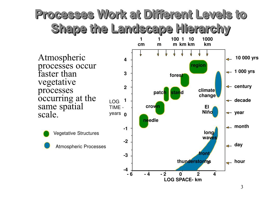 Processes Work at Different Levels to Shape the Landscape Hierarchy