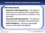 emotionally intelligent leadership competencies