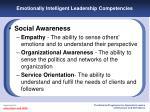 emotionally intelligent leadership competencies19