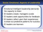 social emotional aspects of leadership