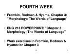 fourth week