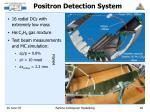 positron detection system
