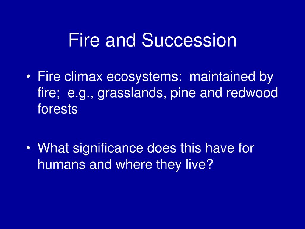 Fire and Succession