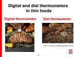 digital and dial thermometers in thin foods