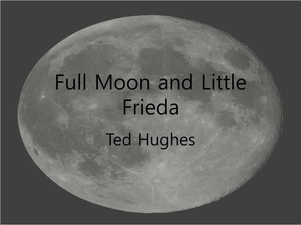 full moon and little frieda l.