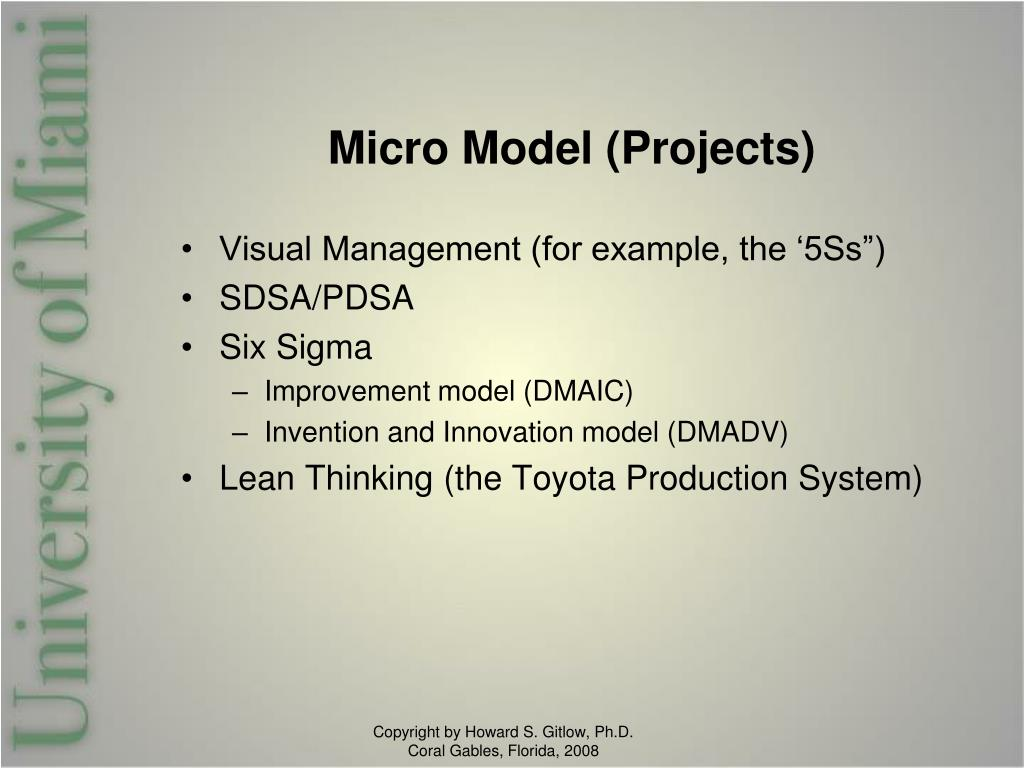 Micro Model (Projects)