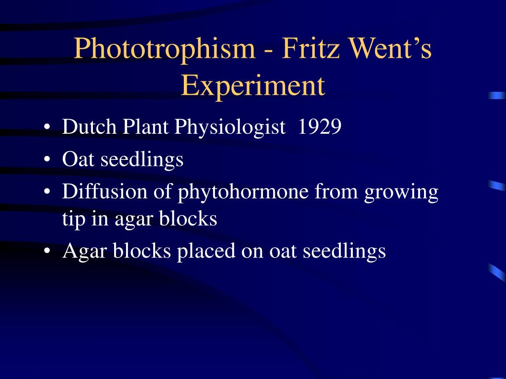 Phototrophism - Fritz Went's Experiment
