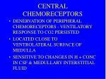 central chemoreceptors