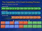 the capabilities of a credit granting process