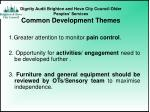 dignity audit brighton and hove city council older peoples services common development themes