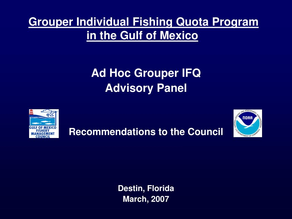 grouper individual fishing quota program in the gulf of mexico l.