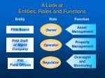 a look at entities roles and functions