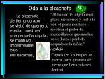 oda a la alcachofa10