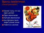 sporcu beslenmesi genel prensipler