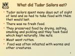 what did tudor sailors eat