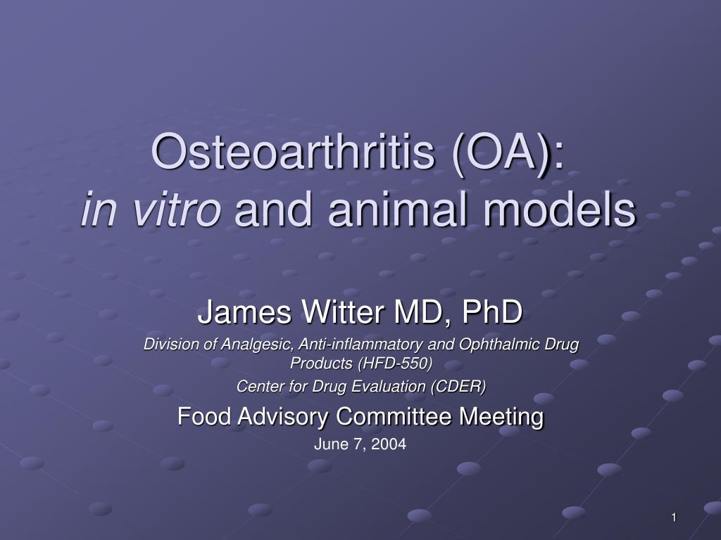 osteoarthritis oa in vitro and animal models l.