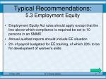 typical recommendations 5 3 employment equity