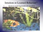 intuition or learned behavior