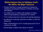 malformations due to epilepsy itself no aeds no major seizures