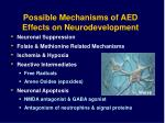 possible mechanisms of aed effects on neurodevelopment