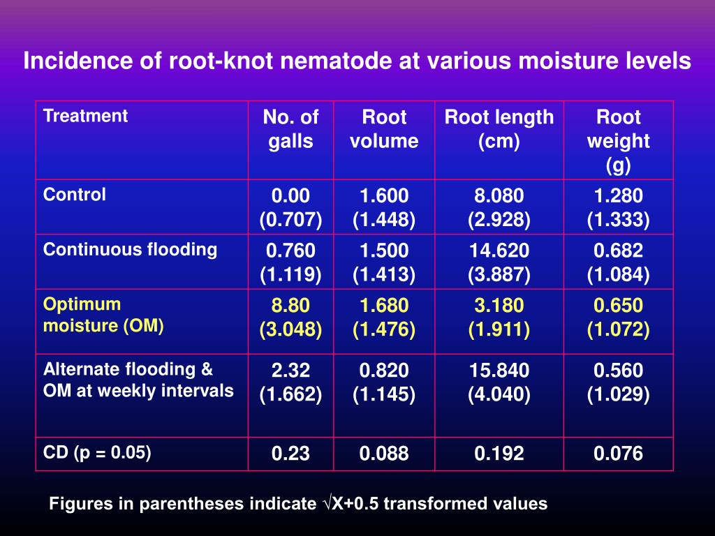 Incidence of root-knot nematode at various moisture levels