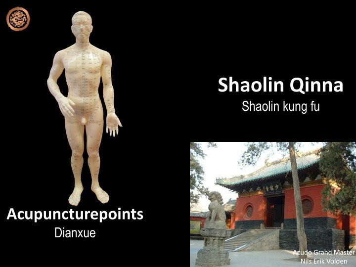 Shaolin qinna shaolin kung fu