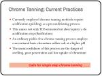 chrome tanning current practices