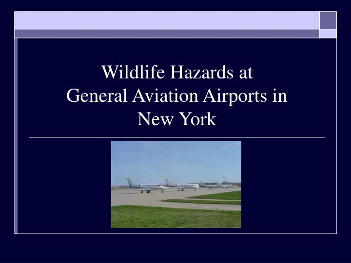 wildlife hazards at general aviation airports in new york n.