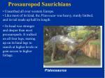 prosauropod saurichians