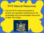 nys natural resources