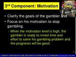 3 rd component motivation