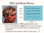 eeg and brain waves