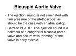 bicuspid aortic valve79