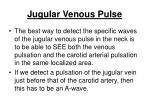 jugular venous pulse