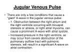 jugular venous pulse197