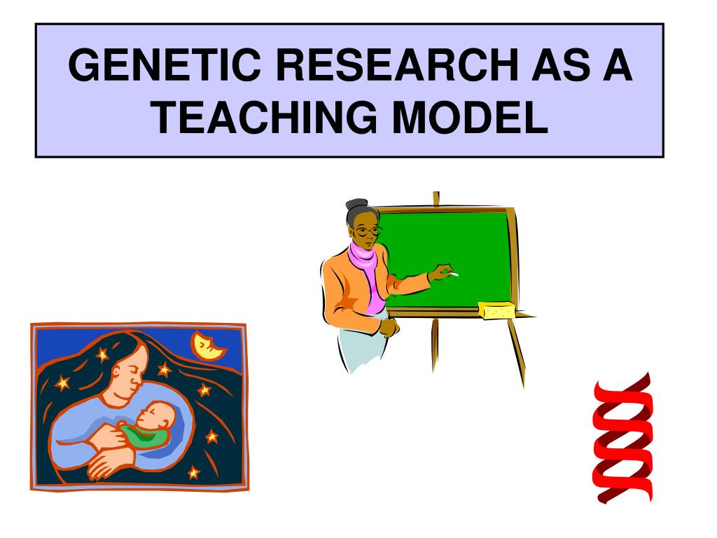 genetic research as a teaching model l.