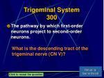 trigeminal system 300