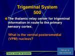 trigeminal system 500