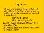 liquamen