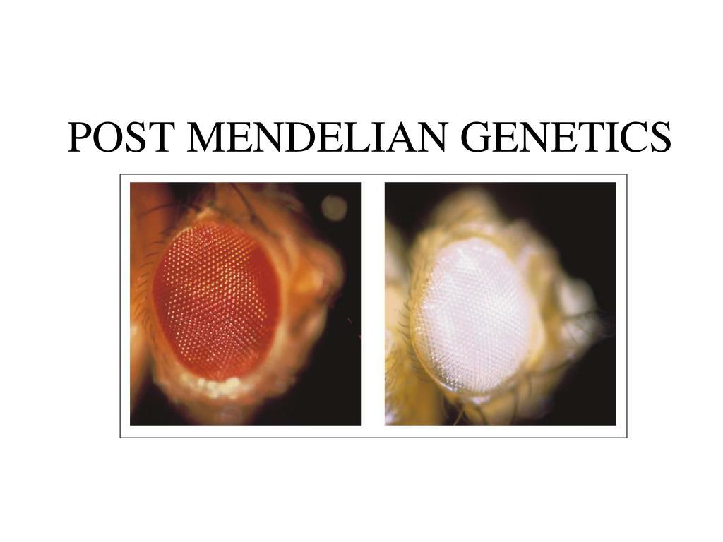 post mendelian genetics