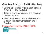 gambia project rnib ni s role