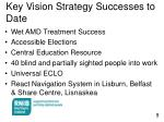 key vision strategy successes to date