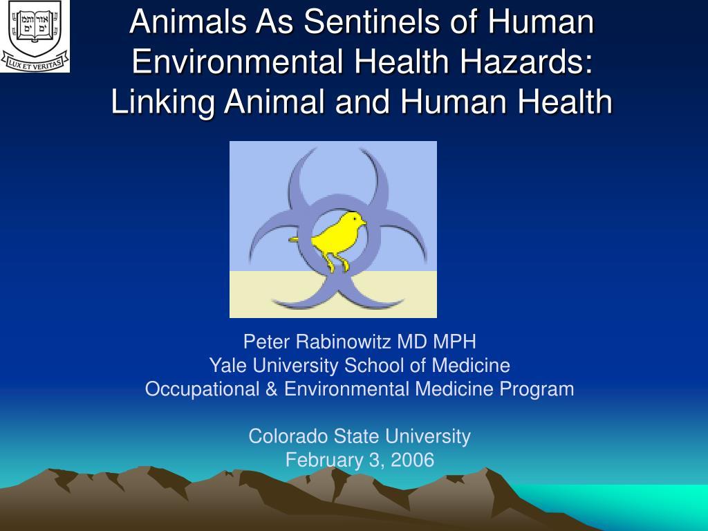 animals as sentinels of human environmental health hazards linking animal and human health l.