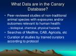 what data are in the canary database