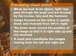 processing visual stimuli