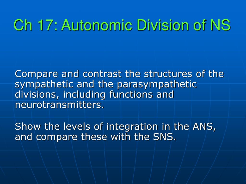 ch 17 autonomic division of ns l.