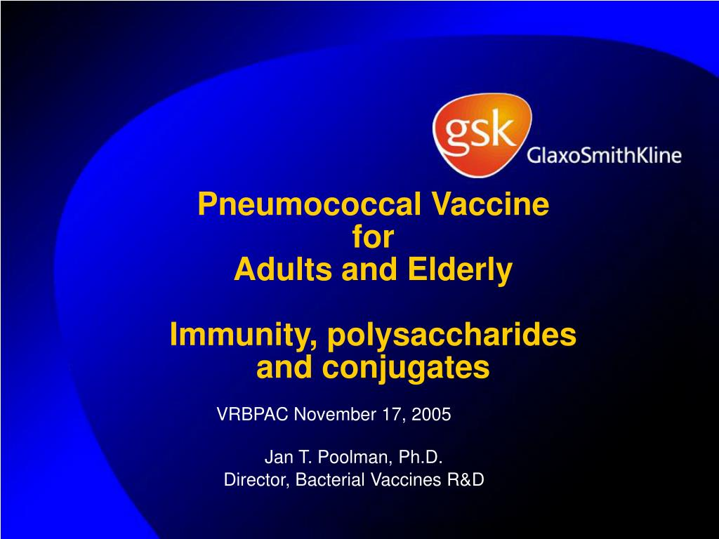 pneumococcal vaccine for adults and elderly immunity polysaccharides and conjugates l.