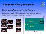 adequate yearly progress7